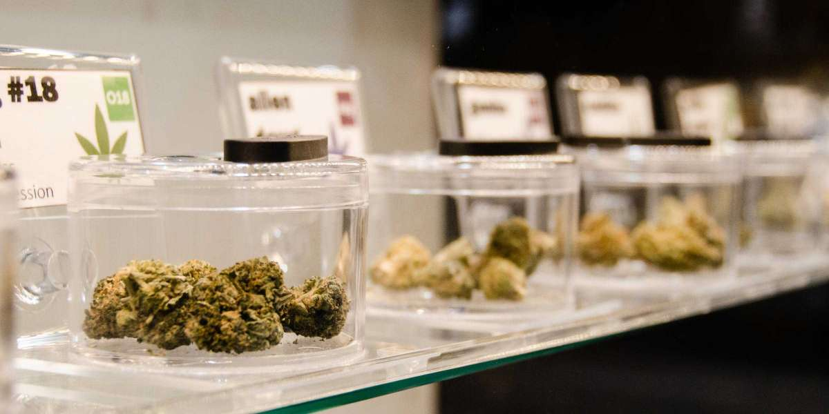 Burlington City Council Sends Retail Marijuana To The Ballot