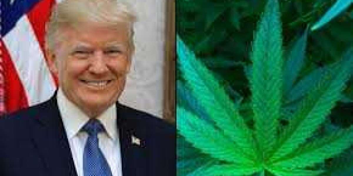 Trump Grants Clemency To Marijuana Prisoners On Last Day In Office