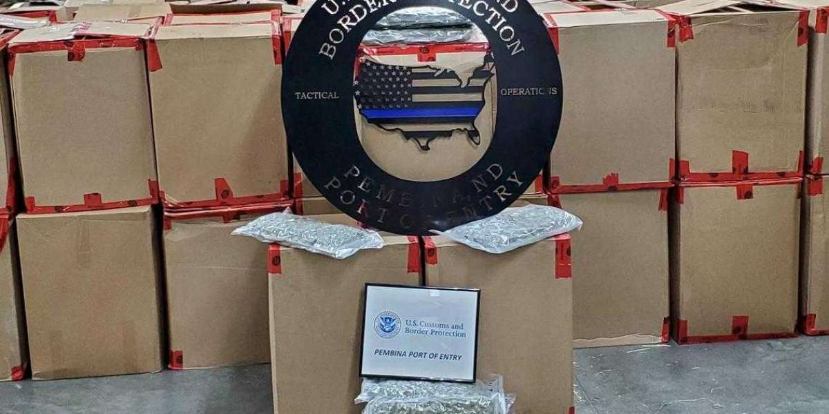 $4.5M Worth of Marijuana Seized At U.S Border At Pembina