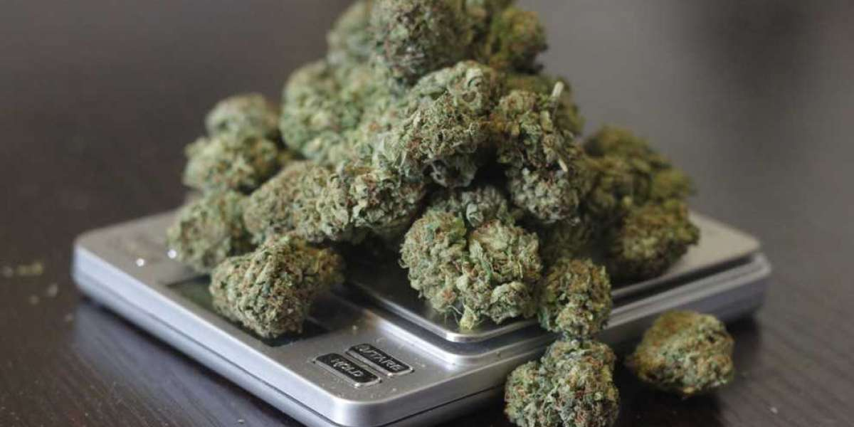 Colorado Legislature Doubles The Amount of Marijuana You Can Have At One Time